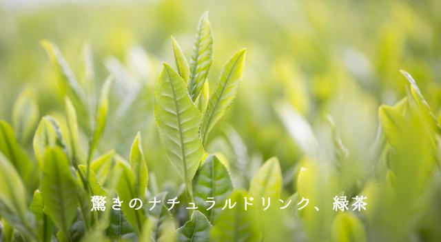 驚きのナチュラルドリンク、緑茶